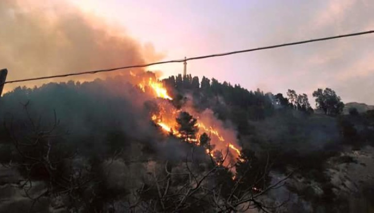 Belmonte (CS) – fuoco alla pineta che circonda il Mausoleo di Michele Bianchi
