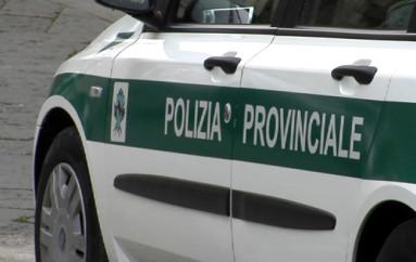 COSENZA – OLIVERIO PUÒ EVITARE LO SMEMBRAMENTO DELLA POLIZIA PROVINCIALE
