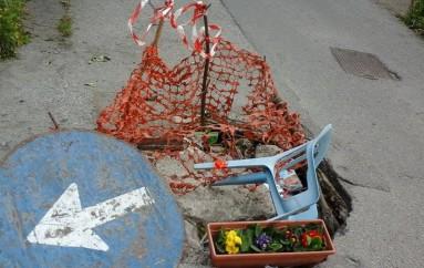 Reggio Calabria – Campagna di sensibilizzazione di Alleanza Calabrese nei confronti del verde
