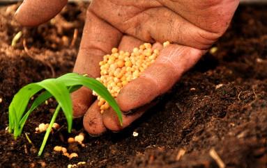 Cinquefrondi (RC) – Convegno agricoltura