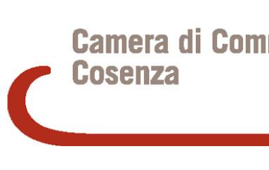 Corigliano (CS) – La Camera di Commercio di Cosenza ospita i Laboratori di Crescere in Digitale: questa settimana dedicata ai colloqui tra giovani e imprenditori