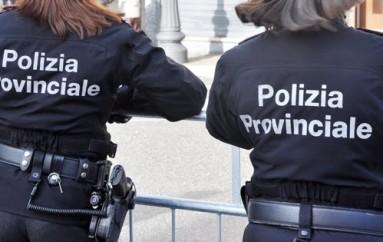 Cassano all'Ionio (CS) – PROTOCOLLO INTESA TRA POLIZIA LOCALE E POLIZIA PROVINCIALE