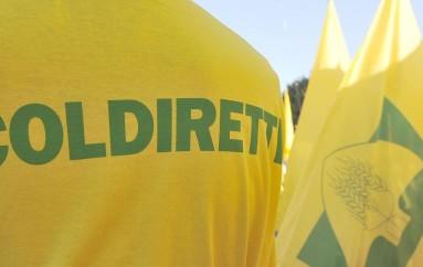 Calabria – Coldiretti fa pressing alla Regione a tutela del reddito di agricoltori ed allevatori