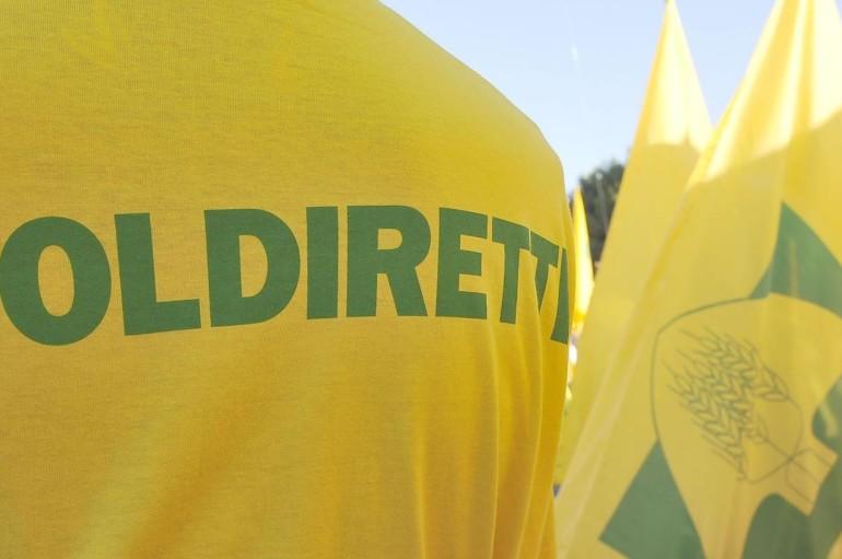Cosenza: Caporalato, Coldiretti lancia un sms solidale contro lo sfruttamento