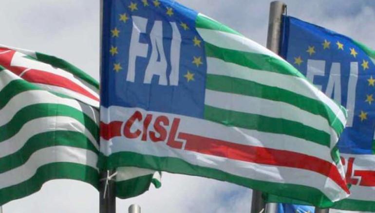 Rossano (CS):La FAI-CISL chiede agli aspiranti sindaci le loro opinioni sui problemi della città e sulle opportunità di sviluppo del territorio