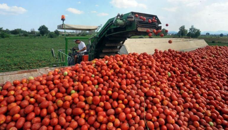 Calabria fuori dal rischio disimpegno dei fondi agricoli