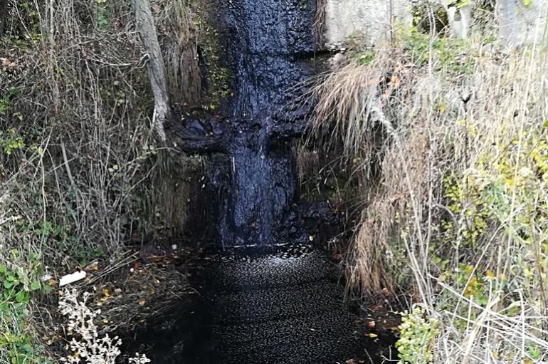 Inquinamento ambientale, sequestrato frantoio ad Albidona
